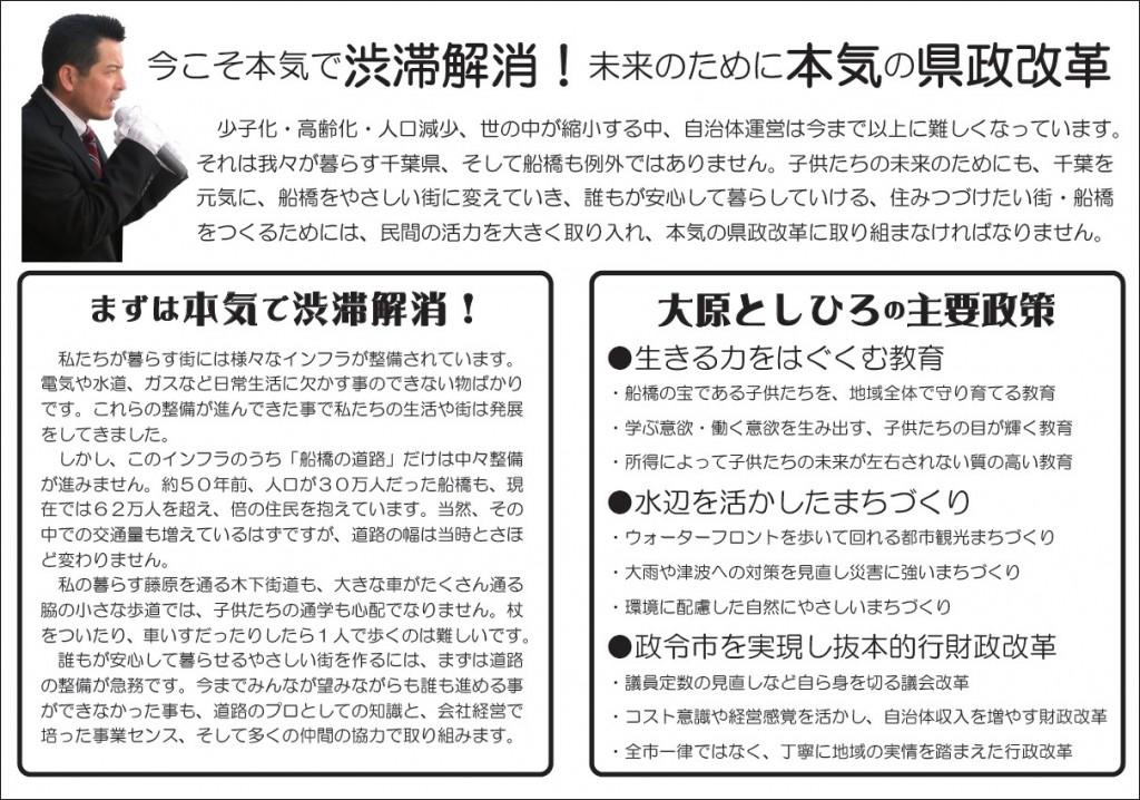 pamphlet-4
